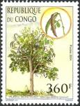cg006-05